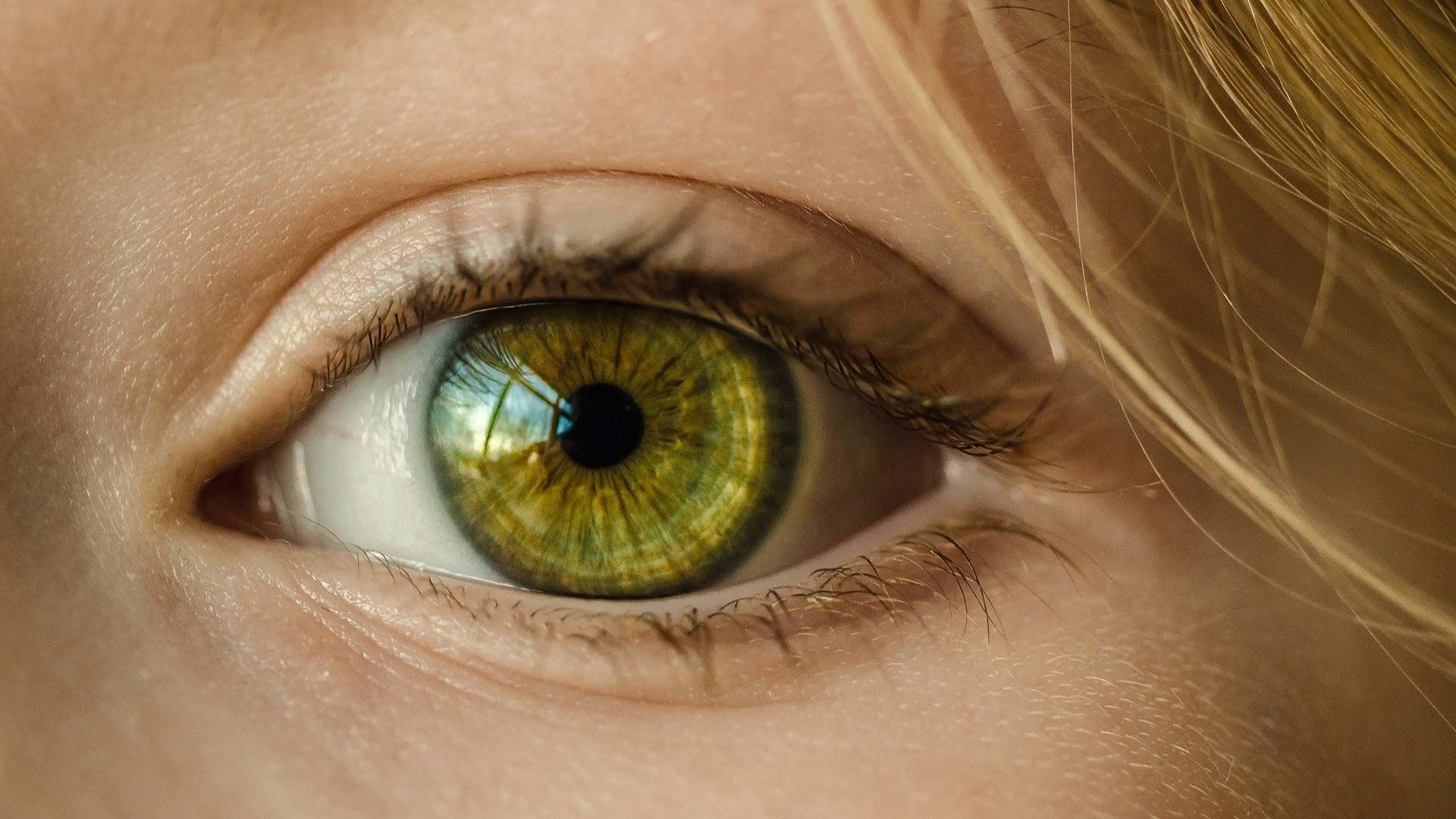 Irisdiagnostik Naturheilpraxis Richthammer Weiden